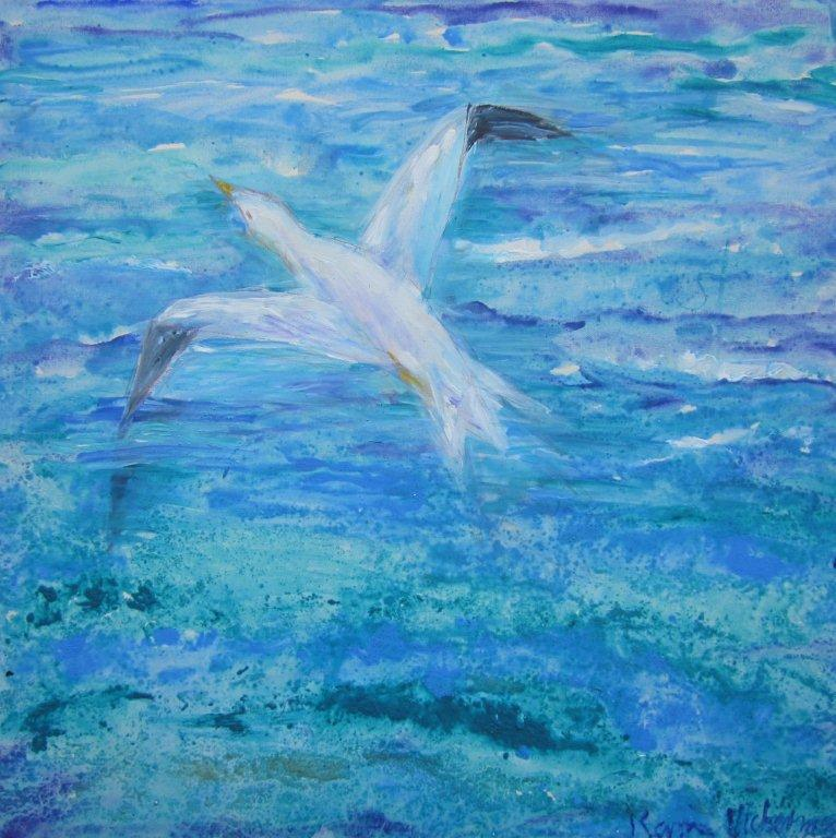 Freiheit über dem Meer